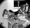 Baggage Carousel (pecooper98362) Tags: binghamton newyork greaterbinghamtonairport baggagecarousel carouselhorse carousel whimsey horsesense blackwhite