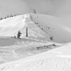 Scoured Ridge, Mt. Hood (Scott Withers Photography) Tags: whiterivercanyon mthood oregon