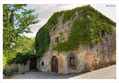 Antigua casona en Sepúlveda (Segovia) (Jose Manuel Cano) Tags: casa house piedra stone sepulveda segovia españa spain pueblo village planta plant verde green nikond5100