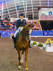 17429_Sydney_CDI_GPFS_0183.jpg (FranzVenhaus) Tags: athletes dressage australia equestrian riders horses ponies rug siec nsw sydney newsouthwales aus