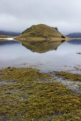 riflessi sul lago (SDB79) Tags: lago matese collina montagna erba freddo inverno neve riflesso natura