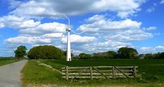 02-Low Noise Wind Turbine Strong Wind (fritzvanderlaar) Tags: wind turbine windmill alternative blades