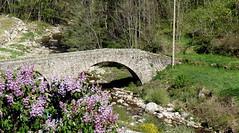 le petit pont (sabine-43) Tags: saintjulienboutières hauteloire