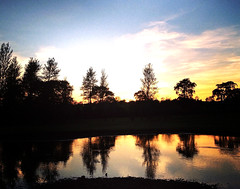 Reflected Silhouettes (cj_millar9) Tags: blue ireland orange lake nature water club night reflections golf landscape photography time silhouettes reflected ni northern hue iphone ballyclare