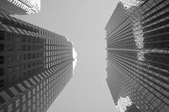 Sky's the Limit (Jefferson Photography) Tags: toronto film minolta streetphotography x700 kodakprofoto jeffersonphotography