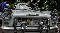 Herald's Interesting Horns (vinzrox) Tags: white car convertible triumph restored standard aa herald