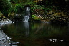 015 (Photos by Wesley Edward Clark) Tags: oregon silverton waterfalls scottsmills abiquacreek abiquafalls