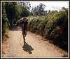 Camiño no sol (José Luis López Vázquez) Tags: santiago de nikon do camino jose luis monte lopez lugo rei santo ano melide gozo sixto palas vazquez sarria camiño sisto portomarín arzúa ourol s8000 orol