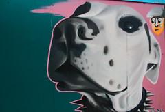 Big Dog (Steve Mo) Tags: street urban art canon graffiti sheffield colorart 1000d