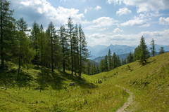 Alpine Meadow (Gikon) Tags: summer mountains alps green colors austria landscapes nikon colorful day cloudy meadow alpine 1855mm dachstein gikon d3100