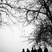 Naryan photoshoot 2010 (Photo by Ida Heinonen / Edit by Lauri Kovero)