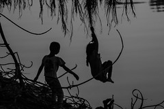 Back to the world of LIMBO (Hermaenos) Tags: bw water monochrome silhouette canon action vftw