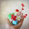 Miniature Oribana 'fresh Attitude'