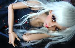 navy blue. (Dancing*Butterfly) Tags: doll tan bjd fairyland abjd celine msd mnf minifee eludys