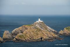 Hermeness, Unst 04 (SallyAnnespics) Tags: blue colour scotland cliffs puffins shetland gannets unst seasky hermeness