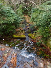 PhoTones Works #4777 (TAKUMA KIMURA) Tags: water river landscape waterfall scenery natural   kimura   em1   takuma    photones