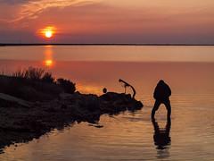 Caador de sol (Pep Vargas) Tags: sun sol amanecer hunter silueta cazador deltadelebre caador albada