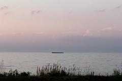 IMG_2935 (gerritkuyvenhoven) Tags: aak markermeer oostvaardersdijk