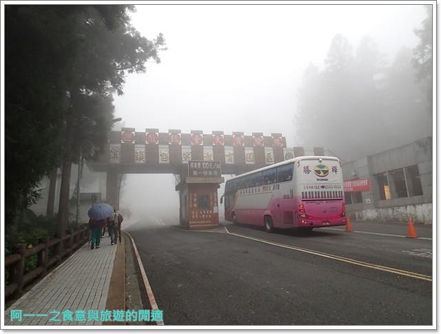 南投溪頭自然教育園區台大image001