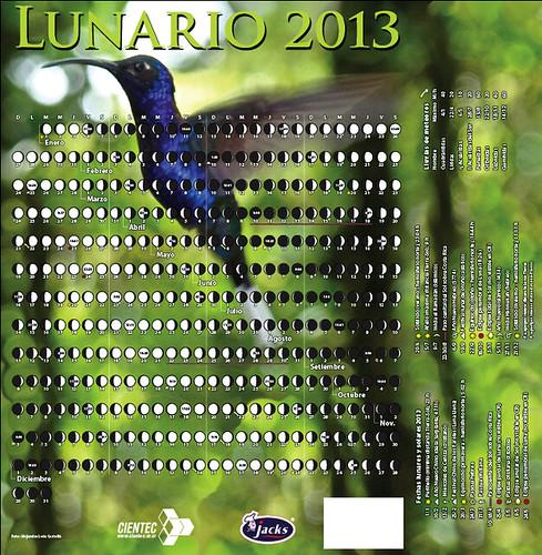 lunario-dorso+lateral2013