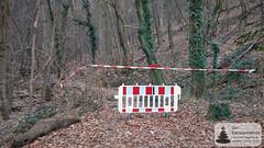 Gesperrt: Kreuzbachklamm im Binger Stadtwald
