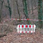 Gesperrt: Kreuzbachklamm im Binger Stadtwald thumbnail