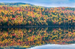 Indian Summer in Canada (Ali Yamaner) Tags: indian summer canada leaves colourful landscape quebec