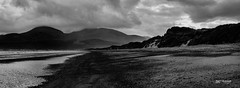 Murlough Bay (Paul T McDowell Photography) Tags: 2016 autumn beach blackandwhite blackandwhitephotography camera canonef70200f28lisusm canoneos5dmarkii cloudy countydown day digital fineartphotography image landscapephotographer lens murloughbay northernireland orientation outdoor panoramic paultmcdowellphotography photography places sand sanddunes sea seascape season technique time unitedkingdom vertical weather year