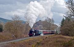visitors (midcheshireman) Tags: steam train locomotive llangollen llangollenrailway wales railway 48624 6960