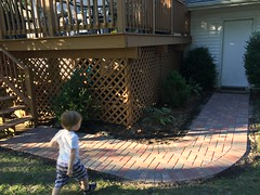 """Paul Walks on the New Brick Path • <a style=""""font-size:0.8em;"""" href=""""http://www.flickr.com/photos/109120354@N07/33113963125/"""" target=""""_blank"""">View on Flickr</a>"""