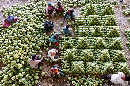 Kothapeta Fruit Market 02