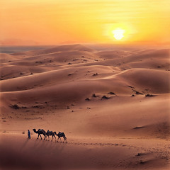 ('J' Jose Maria Perez Nuñez) Tags: sahara mezouga desierto marruecos jmpznz