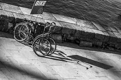 Prontas para pedalar (Nuno's Photo Warehouse) Tags: 2017 nunofrocha portugal porto pb bw pretobranco blackwhite river rio douro street rua sun sol morning manhã bike bicicleta shadow sombra