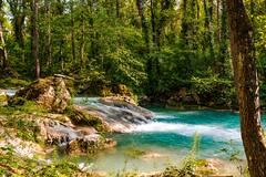 18042017-16042017-_DSC0658.jpg (salvatoretinteri) Tags: italia toscana elsa siena conceptphotos foresta bosco tronco alberi rocks roccia cascata river fiume acqua water