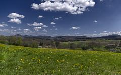 Dandelion meadow with view (KF-Photo) Tags: 1610 achalm albvorland georgenberg löwenzahn ohmenhausen schwäbischealb swabianalb