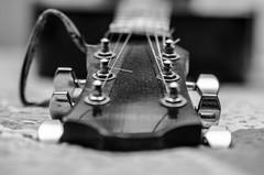 music (yozhzh) Tags: music guitar strings bw guitarneck