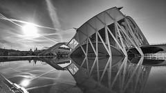 Valencia Ciudad de las Artes y las Ciencias (bbiagh135) Tags: valencia arte artes bianco nero bw sea sun architcture architettura mobile lg g5 fallas spain spagna