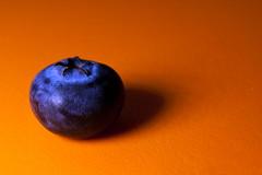Blueberry (tomcanon68) Tags: macromondays orangeandblue canon40d canon canon100mmmacro macro blueberry orange minimalism fruit