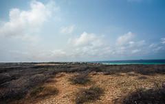 Toronto Film Photography -016 (*Jofo*) Tags: aruba landscape sky film josephfolino torontofilmphotography water kodakektar100 analog sand clouds josephfolinocom beach