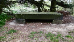 Preserved parapet stone nr Bradley viaduct   (Huddersfield   Newtown - Mirfield  old railway) (dave_attrill) Tags: huddersfield newtown hillhouse mirfield lmsr london midland scottish railway disused line goods only branch trackbed west yorkshire riding cycle path foothpath ncn connection sheffieldtobradford bradley viaduct april 2017