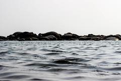 LOOP (Icarus Amit) Tags: sea seabeach coxs bazar coxbazar coxsbazar labonipoint beach bangladesh bangla deshi summertime hot evening 600d stm 55mm canon canon600d is best