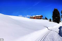 Val Badia (cosimocarbone) Tags: winter inverno snow divertimento vacanza trentinoaltoadige valbadia neve montagna