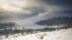Derry Lodge (gerainte1) Tags: derrylodge cairngorms scotland mountains winter snow sky forest trees