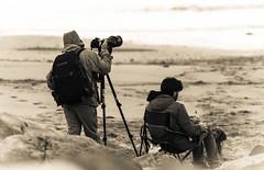 working (www.infografiagijon.es) Tags: wwwinfografiagijones infografia gijon astur asturias asturies xixon hernancad canon eos5d markii blanco negro black white bw bn people gente playaespaña playa fotografos fotografia