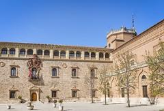Alcala de Henares, Madrid. (jack cousin) Tags: nikon d610 on1photos spain madrid architcture historic ancient building emblem crest flag turret tree