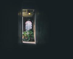 Alley in NOLA (Darren LoPrinzi) Tags: 2016 5d canon5d urban canon city frenchquarter la louisiana miii neworleans neworleanstrip2016 alley minimal minimalism shadow light corridor bike bicycle nola window