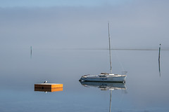 The Platform (Ian@NZFlickr) Tags: swimming diving platform macandrew bay dunedin fog otago harbour nz yacht seagull