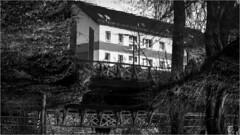 180° (:: Blende 22 ::) Tags: 180° deutschland germany thuringia thüringen eichsfeld eic heilbadheiligenstadt kurpark wasser reflections black white blackwhite einfarbig schwarz weis schwarzweis canoneos5dmarkiv ef70200mmf4lisusm