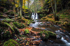 Goitstock (jasonmgabriel) Tags: waterfall autumn scenery landscape long exposure tree rocks river stream yorkshire