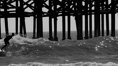 Star Chaser (Rand Luv'n Life) Tags: odc our daily challenge crystal pier san diego california surfer wave pilings sunshine sparkling stars ocean monochrome blackandwhite outdoor water sport